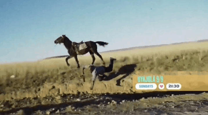 Cheater Falls Off The Horse On UyaJola 9/9 Leaving Viewers In Stitches